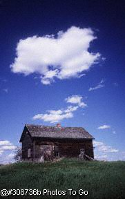 Weathered farm building(field)